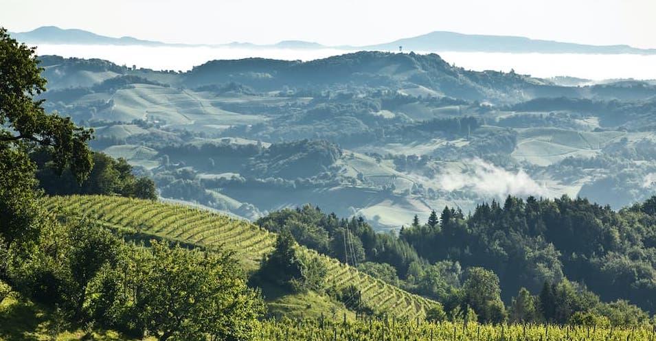 Klima in der Weinregion Steiermark