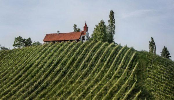 Ortsweingebiete der Südsteiermark