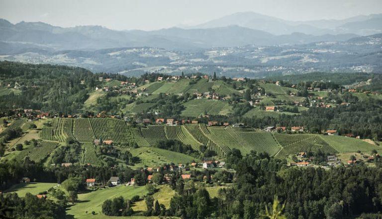 Mikroklimata sind essentiell für die Weinregion Steiermark - Weststeiermark