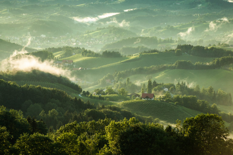 Das Klima in der Wein-Region Steiermark