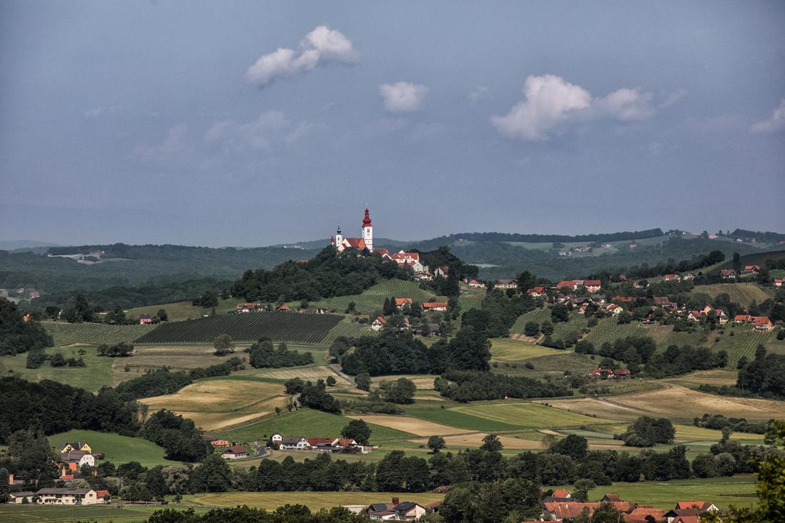 Ortswein St. Peter im Vulkanland - DAC Anbaugiebt Südsteiermark - Wein Steiermark