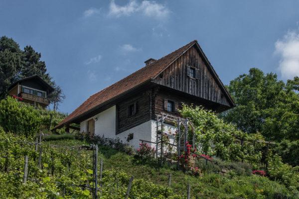 Ortsweingebiet im DAC Weinanbaugebiet Vulkanland - Wein Südsteiermark