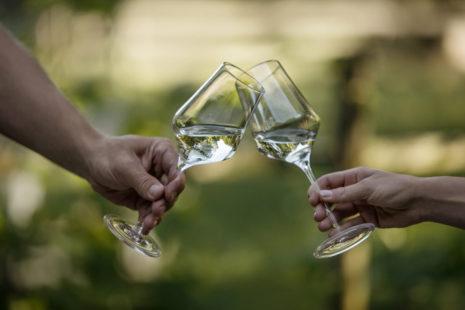 Vintage Presentation - Wein Steiermark