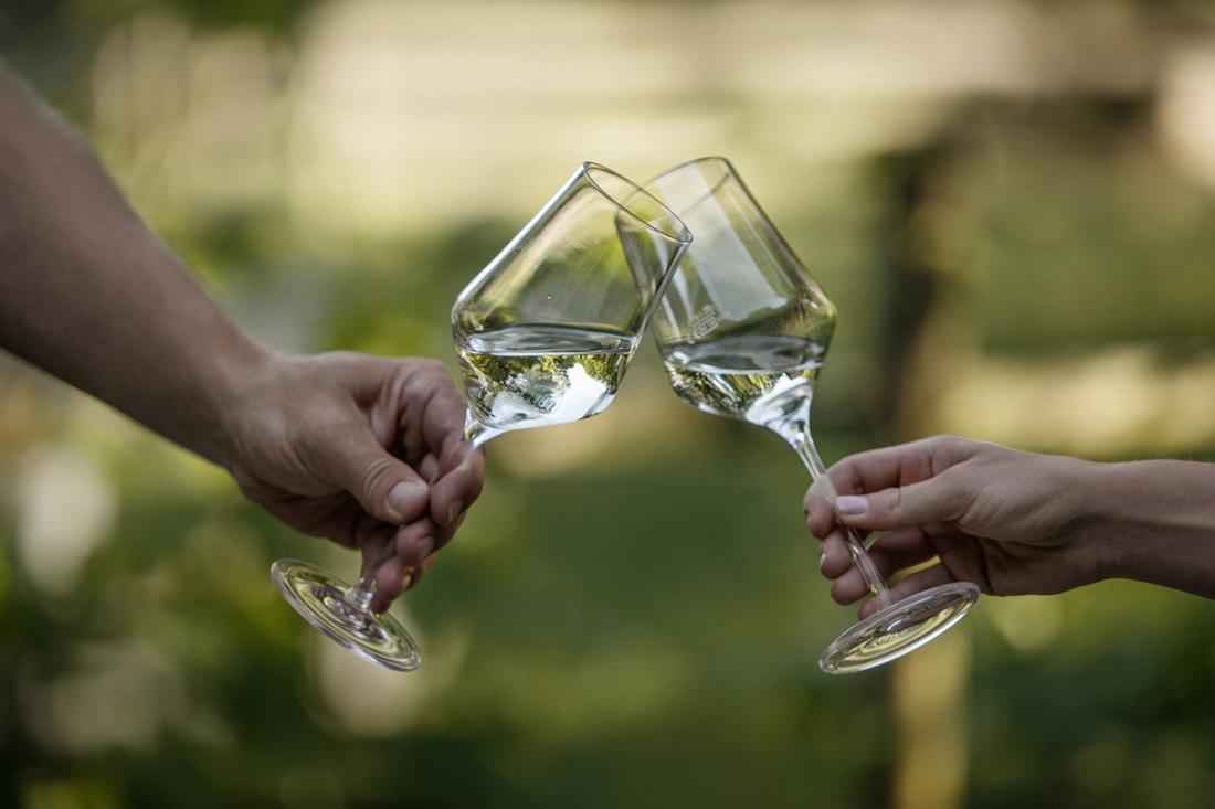 Das Steirische Weinjahr 2019 - Steirischer Weißwein