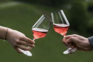 Weinjahrgang 2020 Schilcher als begehrter österreichischer Rosé - Wein Steiermark