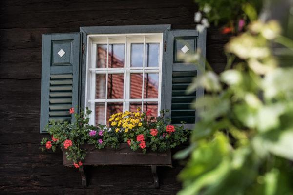 Buschenschanken sind zentral für die Weinregion Steiermark - Steirischer Wein
