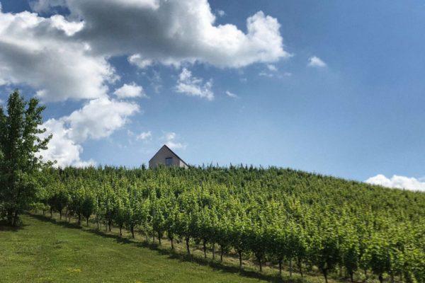 Traditionelle südsteirische Architektur an den Weinbergen