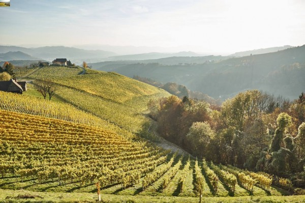 Anbaugebiet Sausal - Ortsweingebiete Südsteiermark