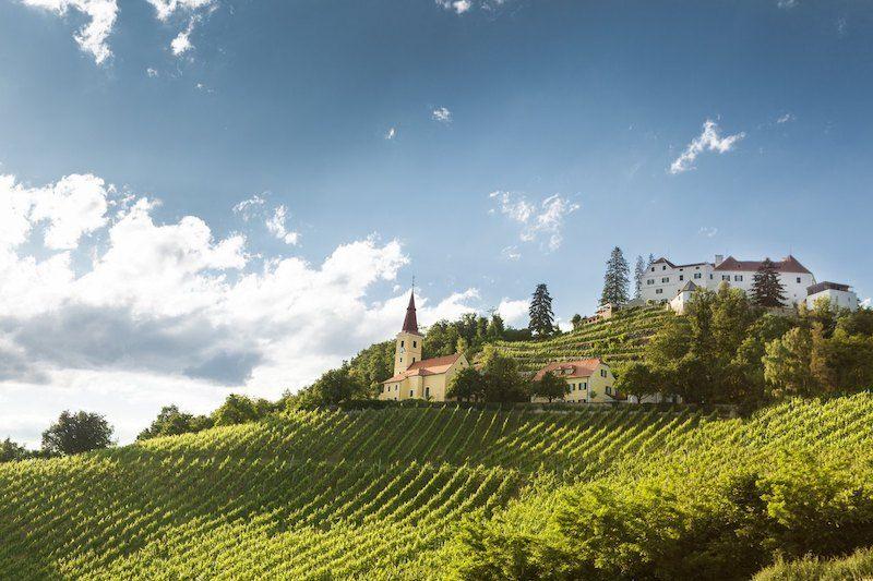 Ortswein Kapfenstein im Vulkanland - DAC Anbaugiebt Südsteiermark - Wein Steiermark