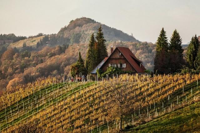 Wein.Plus Riedenwein Verkostung - Riedenweine Steiermark - Steirische Rieden