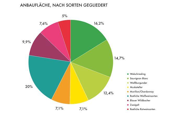 Steirische Rebsorten - Anbaufläche nach Sorten gegliedert - Wein Steiermark