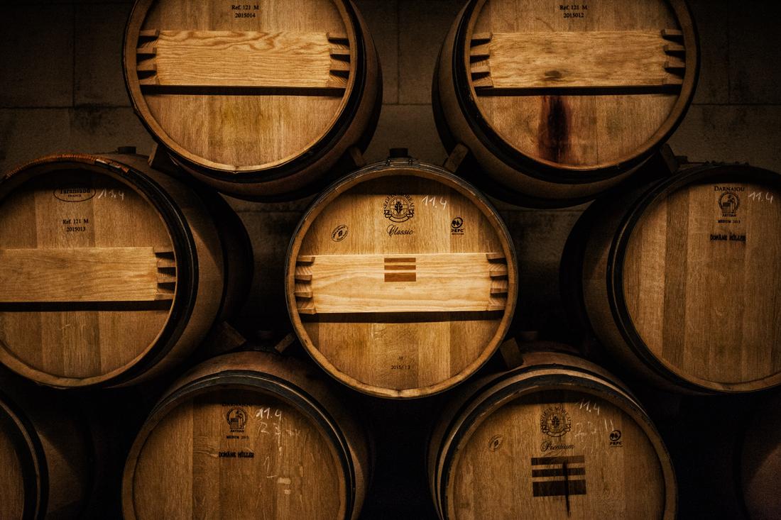 Weinfässer - MasterClass Steirische Weinvielfalt