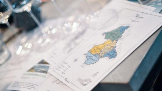 Wein Steiermark -DAC - Weinlexikon
