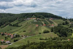 Weinhänge - Top Ergebnisse beim Concours mondial du sauvignon - News Wein Steiermark