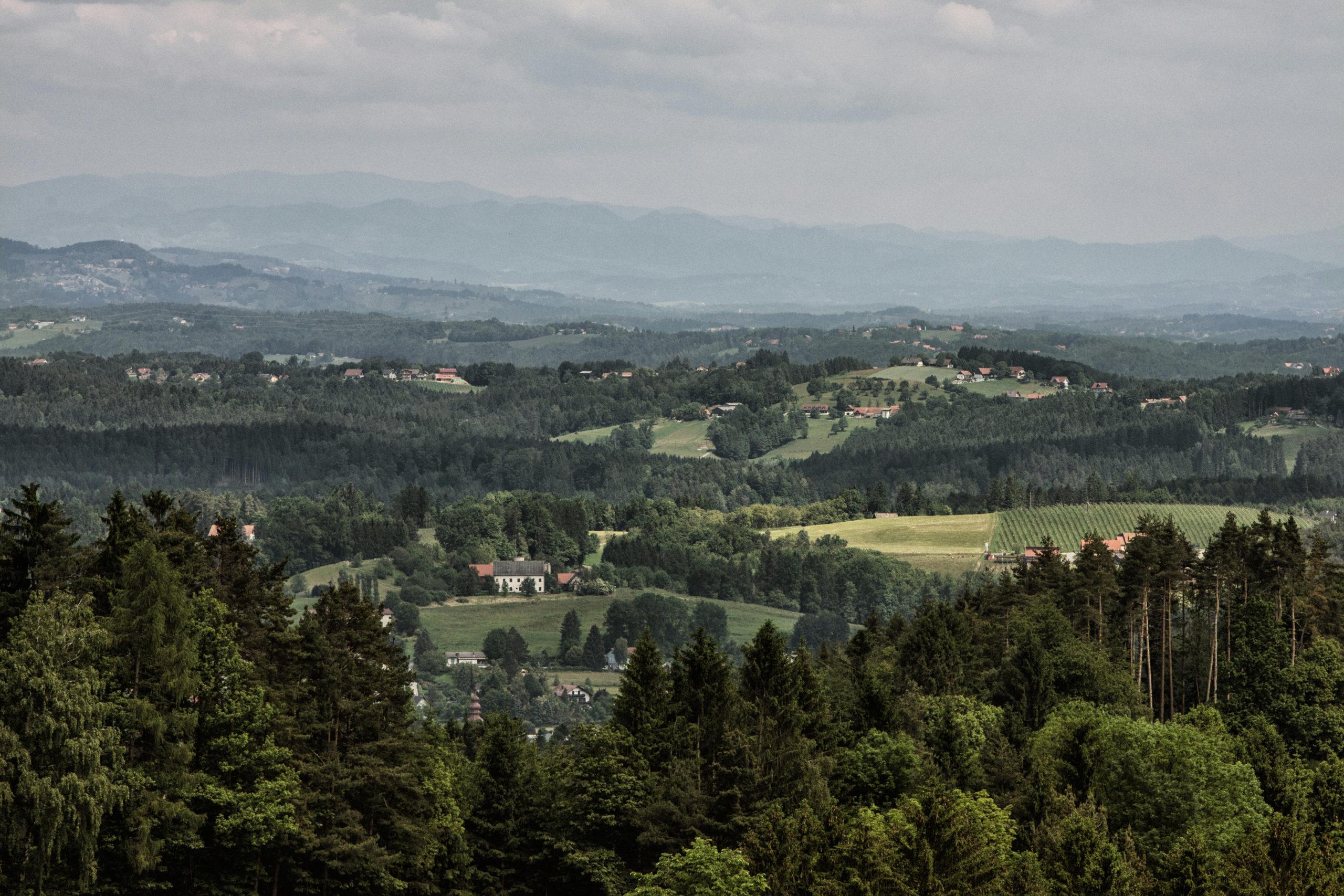 Weinland Steiermark - Gebietsweine - Wein Steiermark