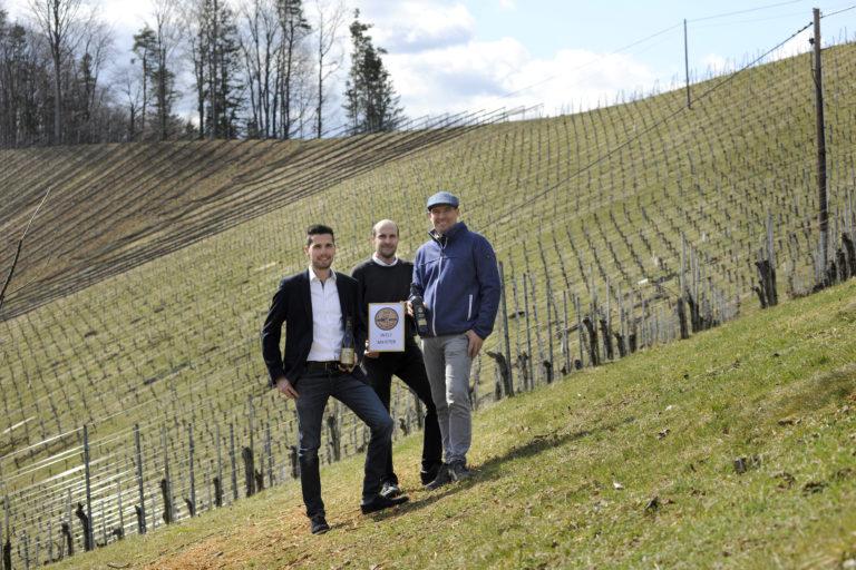 Top Ergebnisse für die Steirischen Winzer_innen beim Concours Mondial du Sauvignon - News Wein Steiermark