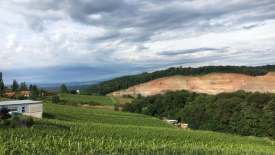 Kölcher Weinstraße der Weinregion Vulkanland DAC - Wein Steiermark