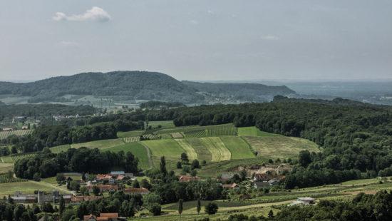 Südoststeirische Weinstraße - Wein Steiermark