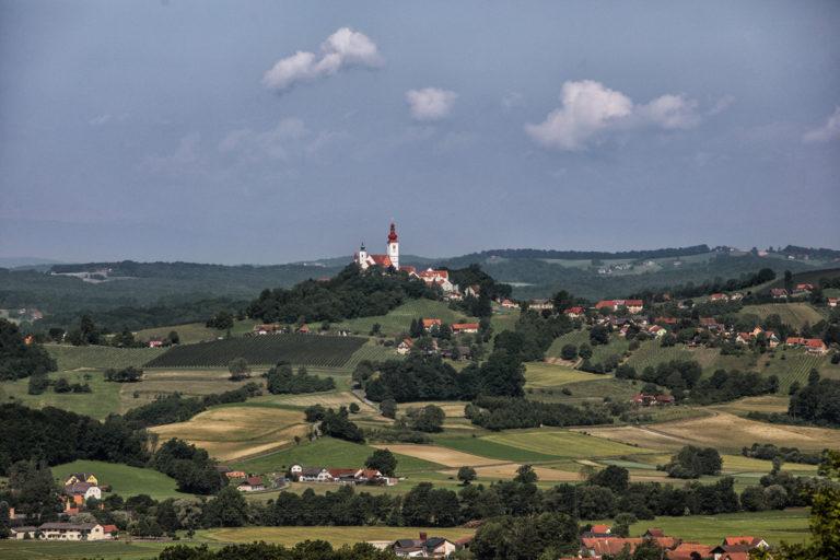 Meininger Verlag Weinverkostung Thema Sauvignon Blanc