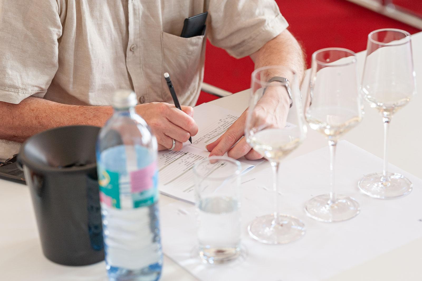 Weinverkostungen der Weinsteiermark